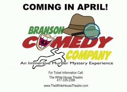 Branson's Lowest Priced Travel Provider